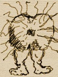 Un ceretegón t�pico con los pelos en posición de ataque